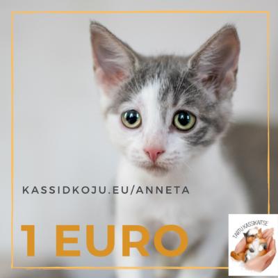 Annetuskampaania: 1 EURO tänavakasside päästmiseks ja raviks